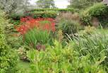 The second Open Garden date is 12th May 2 - 5 pm.