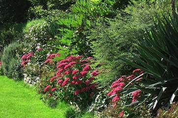 Garden borders in September are beautiful.