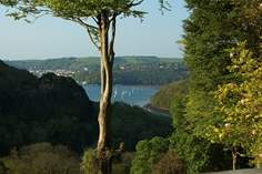 Lost and Found - Holiday Cottage - 2.1 miles N of Dartmouth