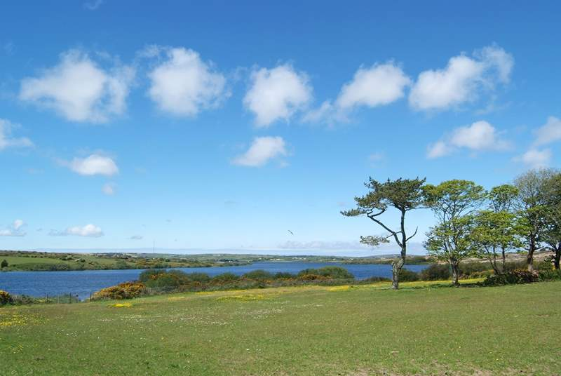 A view from the south of nearby Stithians Lake, the opposite side from the Watersports Centre and the Golden Lion pub.