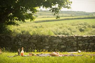 Wonderful countryside views, perfect for a picnic or sitting around the new fire-pit (photo to follow).