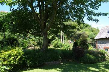 The garden is quite large with a level grass area as well as terraced gardens which go up steeply behind the cottage.