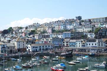 Craft of all shapes and sizes use Brixham's busy harbour.