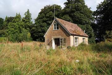 This is the idyllic setting for The Pump House. Your very own wildlife meadow.