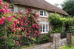 Shedrick Cottage - Holiday Cottage - 8.2 miles N of Lyme Regis