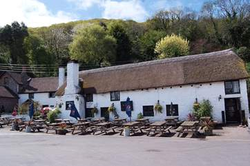 Walk through the orchard and woodland to this lovely pub at Porlock Weir for lunch and then wander along the beach.