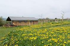 Knightstone Safari Tent Glamping - Holiday Cottage - Ottery St Mary