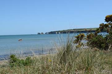 Further afield, Studland beach, safe and sandy. In the distance Old Harry Rocks, the beginning of The Jurassic Coast.