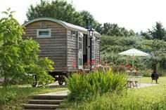 Cottages near Sharpham Tea Garden