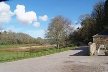 The Penrose Estate wraps around the lake at Loe Bar, such a pretty area with paths through the woods.
