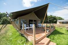 Hawk Safari Tent