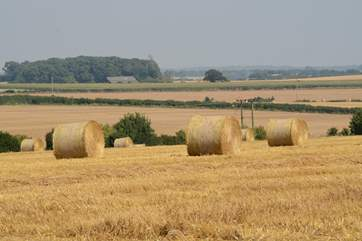 Rural Dorset in the summer.
