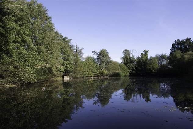 Barton Manor Lake Cottage-5