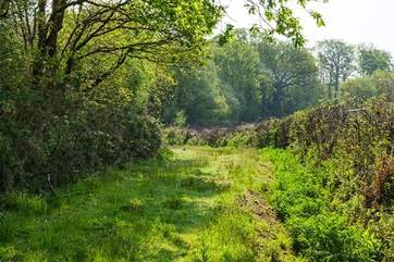 Your very own private access to the Tarka Trail. Fabulous adventure for all the family.
