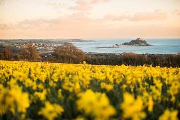 A view to Marazion and the 'Mount'.