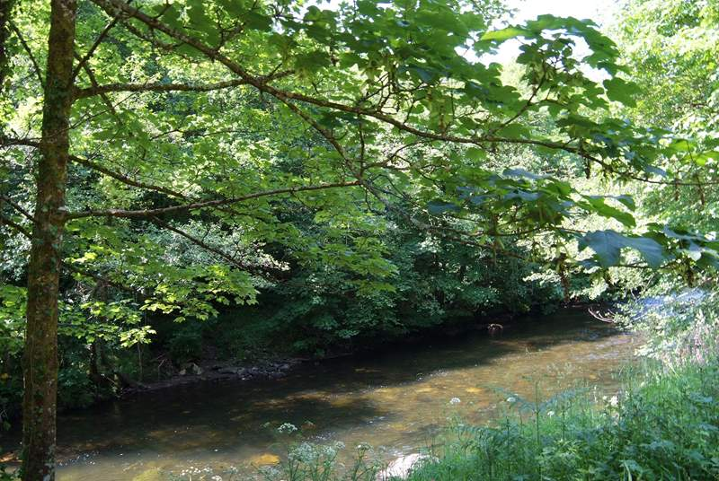 The river borders the paddock (take care with children).