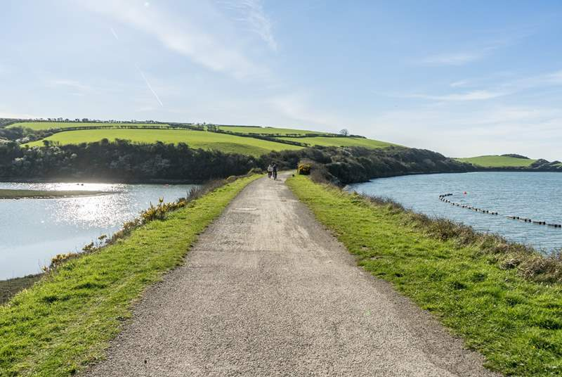 If your feeling energetic then a day on the camel trail is a must!