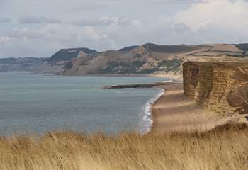 A scenic 30 minute drive will take you to the Jurassic Coast.