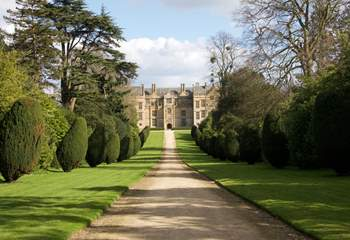 South Somerset is fortunate to have many historically important houses, such as Montacute, within close driving distance.
