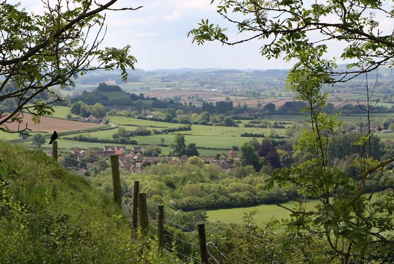 This is the view from the iron age hill Fort at Ham Hill. This special geological site is the source of the beautiful stone of the period buildings through this area.
