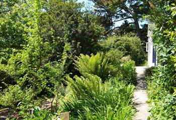 The path leads through the garden to the front door.
