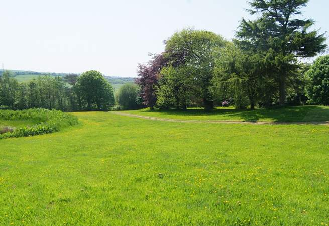 This is the view looking down the meadow towards the entrance gate. There is a deep pond to the left of this image - the reason for the child age restriction.