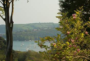 The Dart Steam Railway wanders through the valley below the cottage.