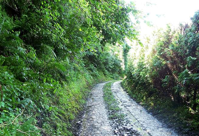 There is a short unmade track from the main road up to the cottage. There is an ancient drover's track off it - a great first walk to find out about your surroundings.