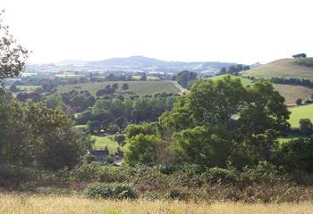 This is the view from the hilltop above Barbridge - a lovely place to walk to and just sit and relax.