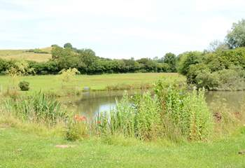 You will be welcome to explore the farm -  just ask the owners - and to watch the wildlife using the lake. Please take care and supervise children at all times.