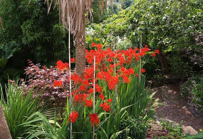In the summer the garden is semi-tropical.