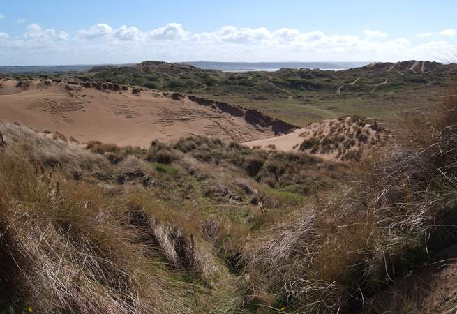 The UNESCO World Heritage Site at Braunton Burrows - 1000 hectares of sand dunes leading to the three mile long beach.