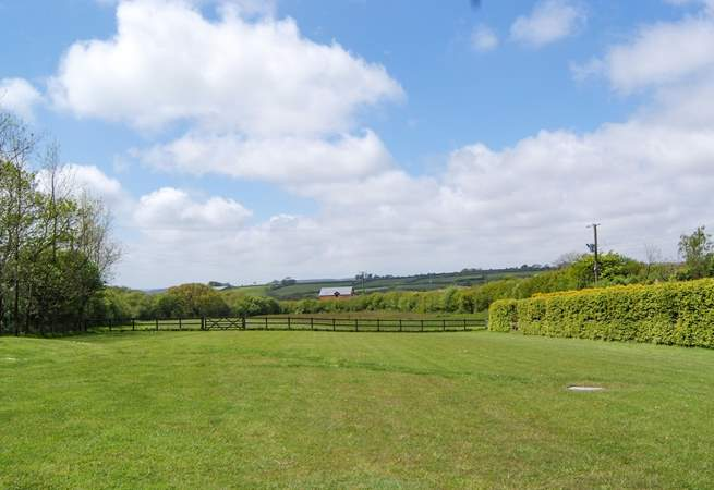 Here is another view of the paddocks, a fantastic area for exercising your dog.
