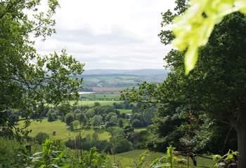 Halse sits in this valley, halfway between Exmoor and The Quantock Hills.