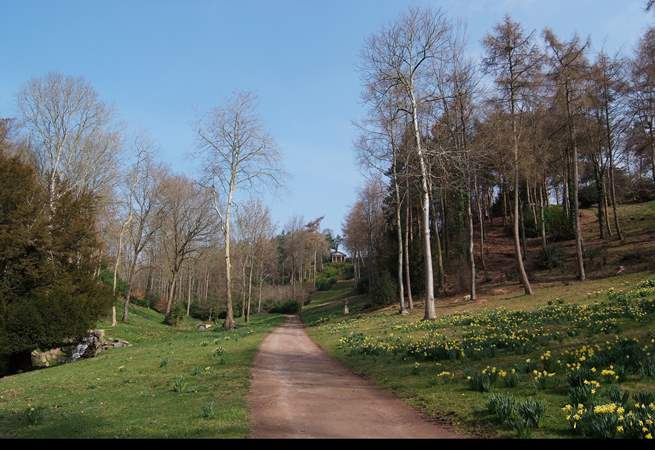 Hestercombe Gardens on the outskirts of Taunton offers lakeside and woodland walks, as well as a cafe and gift shop.