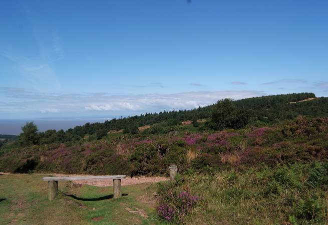 This is the amazing view from the top of the Quantock Hills at West Quantoxhead - overlooking the Bristol Channel to South Wales!