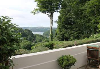 Glimpses of the River Dart.