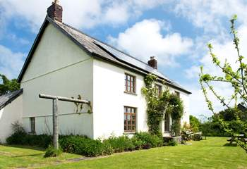 Grascott House is a fabulous farmhouse with room inside and out for all the family. Free range children and dogs welcome!