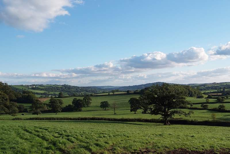 The view down the stunning Yarcombe Valley - right in front of the cottage.