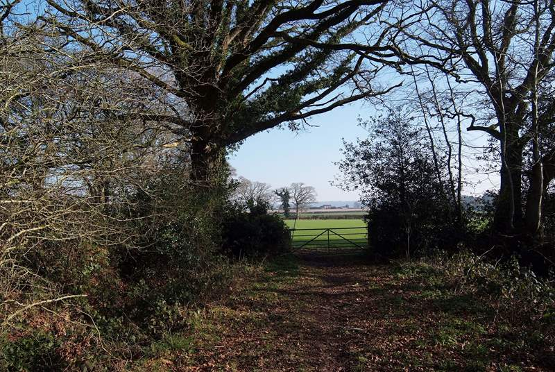 The far end of the bridleway past the lodge.