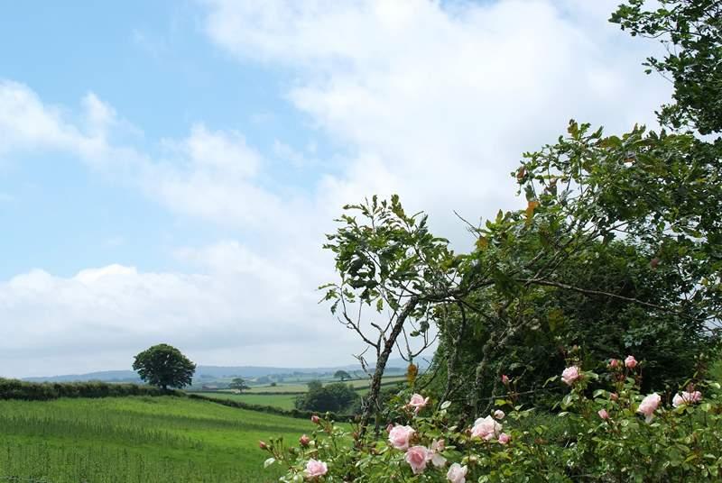 Views down into Cornwall.