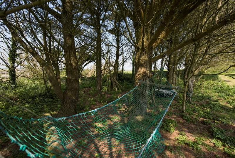 The lovely communal woodland area.