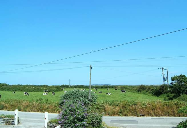 The view from the upstairs front bedroom, where you can see right across to Goonhilly Downs.
