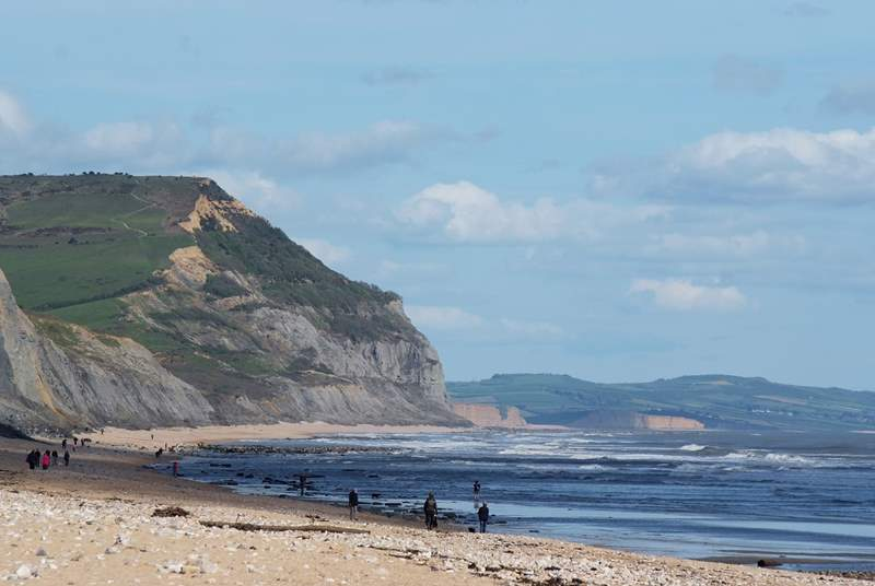 Charmouth beach is a great place for children to search for fossils.
