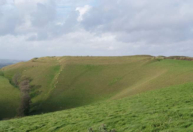 The inland countryside is so beautiful here too. This is Eggardon Hill, one of many Iron Age hill forts in this area.