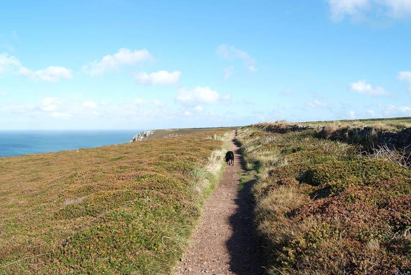 A lovely coastal walk.