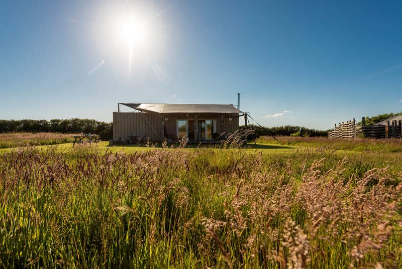 Situated in a 7 acre wild flower meadow, Rusty is the perfect all year round glamping getaway.