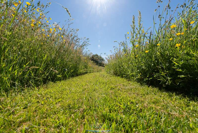 A walk through the gorgeous on-site wild flower meadow must be on the 'to do' list.