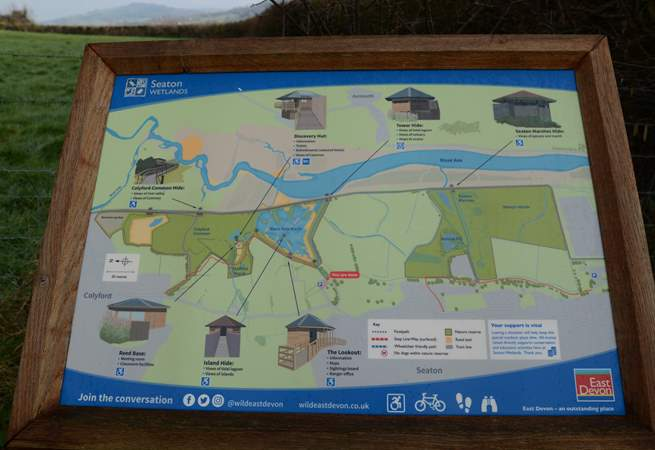 Seaton wetlands, enjoy the bird and insect life along the river Axe, only assistance dogs are allowed.