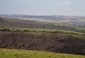 Heading up from Dulverton towards the moors and you will be rewarded with fabulous open space and panoramic views.